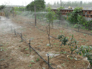 滴灌工程施工前需做好哪些检查